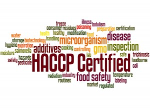 What is HACCP? (A Step-by-Step-Guide) by dicentra