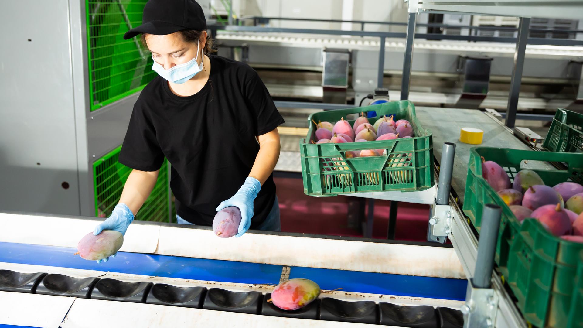 2020 Biennial Food Facility Registration Renewal